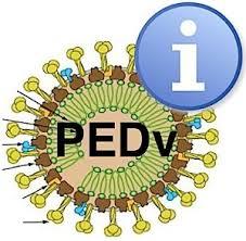 PEDvirus